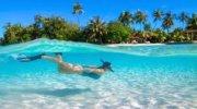 Весенние каникулы на Мальдивах !!!