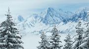 На лыжи в Словакию (Новогодний)