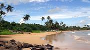 Экзотическая Шри-Ланка