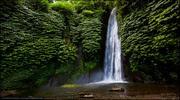 о. Бали / Тропический отдых
