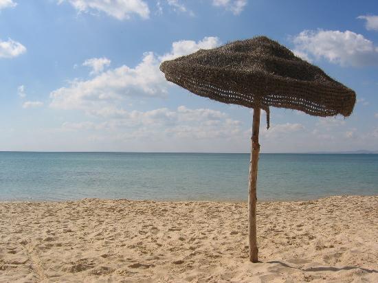Прекрасний Туніс, Хаммамет