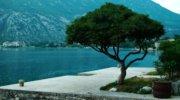 Гарячі тури, Чорногорія Класна Вілла