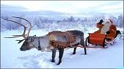 Лапландія - тут живе Санта!(Новорічний)