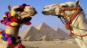 Єгипет Хургада!!!МЕГА НИЗЬКА ЦІНА!!!