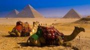 Єгипет по гарячим цінам!  ХАЛЯВА !!!
