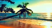 Горить відпочинок в сонячній Шрі-Ланці