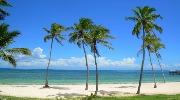 Теплая и экзотическая Шри-Ланка