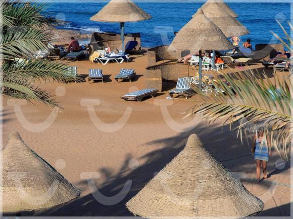 TURQUOISE BEACH HOTEL ШармэльШейх Египет описание