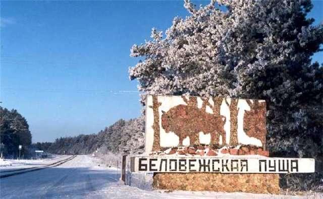 Туры в беловежскую пущу из минска