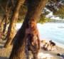 Поплавська Марина