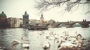 Знижно ціну на тур: Прага та Дрезден