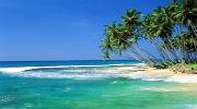 Шри-Ланка - встреть весну ярко!