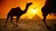 ЕГИПЕТ - ШАРМ - 10 ночей за 17200 грн за двоих