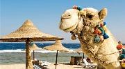 Шарм Эль Шейх - 10 ночей на побережье Красного моря!