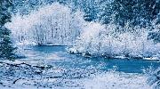 у Закарпаття на Старий Новий Рік - виїзд 12.01 на 3 дні