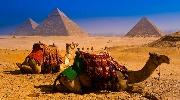 ЄГИПЕТ – горящі путівочки на 22.01 на 7 ночей !