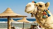 УВАГА! СУПЕР ЦІНА на відпочинок у Єгипті !