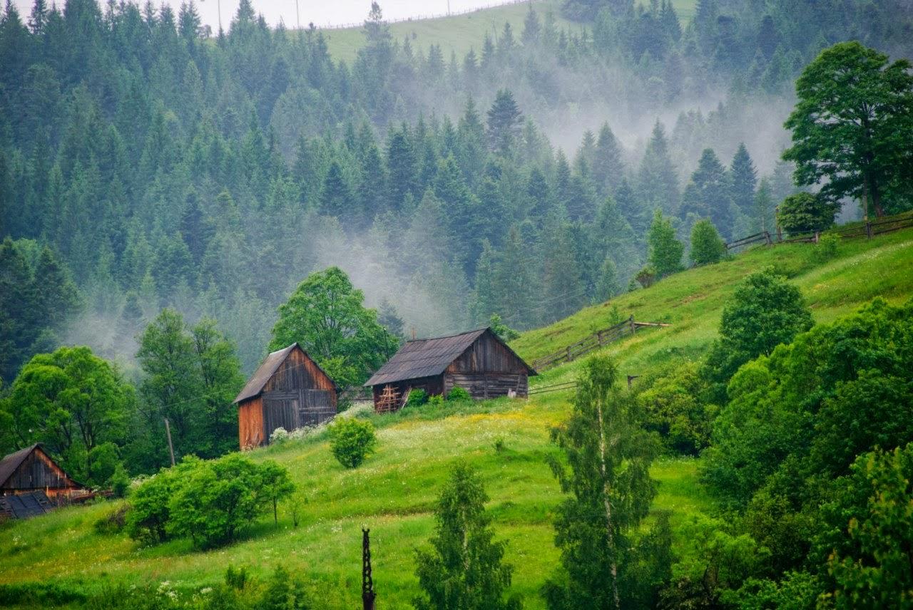 красивая природа фото украины