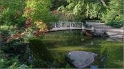 Софіївський парк на 11 чеврня