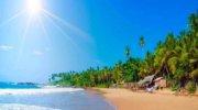 Шри-Ланка: Прямой перелет из Киева