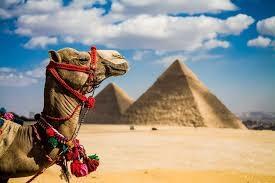 Горить Єгипет 10 ночей