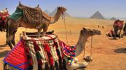 Гаряча ціна !!!Єгипет , супер ціна !!!