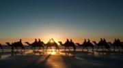 Солнечный Египет на день влюбленных