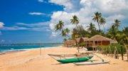 Отдых в Шри-Ланке по самой низкой цене! Горячее предложение!
