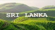 Супер предложение - Шри-Ланка!