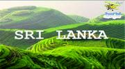 Супер пропозиція - Шрі-Ланка! Прямий переліт