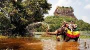 Пасхальні свята на Шрі Ланці!