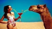 Гаряче святкування Пасхальних свят у ОАЕ за найнижчими цінами та найвищим сервісом!