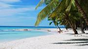 Только сейчас туры в Доминикану за самой низкой стоимостью! Вылет из Киева, отель на берегу океана, All Inclusive!