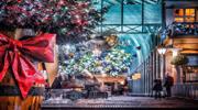 Туры на Рождество 2019. Празднуйте свою зиму ярко в любой из стран Европы!