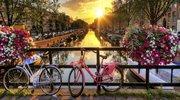 Знижено ціну на екскурсійний тур Голландський експрес!