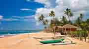 Океан і серф, слони, цейлонський чай!  Полетіли на Шри-Ланку?! Ціни вас приємно здивують!
