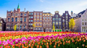 Подборка весенних туров в всемирно парк тюльпанов в Амстердаме!