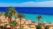 Скидки до 25% на отели сети Albatros в Египте! Шарм-эль-Шейх и Хургада