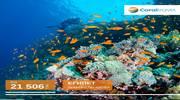 Мрієте про подорож до Червоного моря?