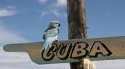 Экзотическая Куба ждет именно Вас