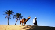 Тунис- Солнце-Море-Пляж !!!!