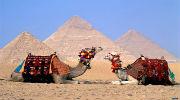 Чарівний Єгипет!!!(Хургада)