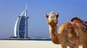 Маєш біометричний паспорт? Безвіз в ОАЕ вже діє!!!