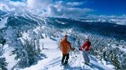 Термали, лижі, гори, дегустації! Від 3722 грн! ( БЕЗ ДОПЛАТ )