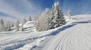 Тур на лижі до Словаччини ! Всього 3286 грн! Без нічних переїздів!