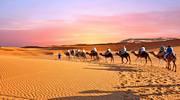 # ГорящіТури # Туніс # гарячіТури # Туніс