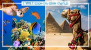 Єгипет: Шарм-ель-Шейх і Хургада