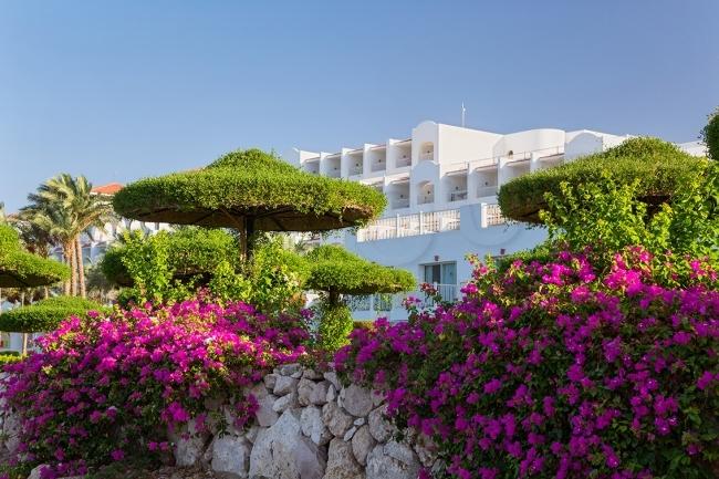 ЄГИПЕТ/ШАРМ ЕЛЬ ШЕЙХ Готель: Siva Sharm 5*
