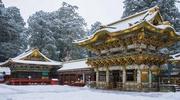 Групові тури в Японію!