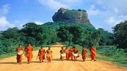 BEST PRICE! Отдых на Шри-Ланке